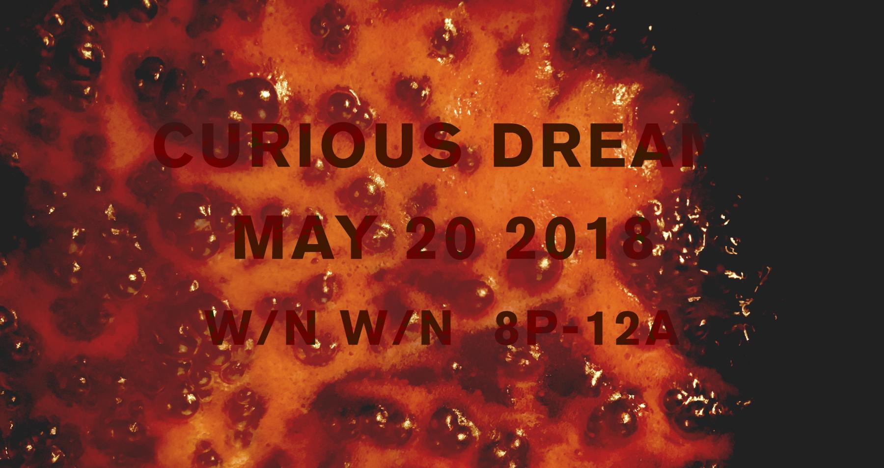 CuriousDream_May2018_Banner.jpg