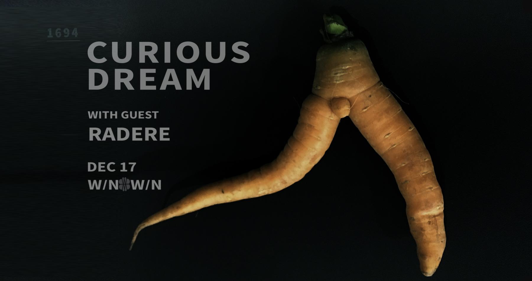 CuriousDream_DEC2017_Banner.jpg