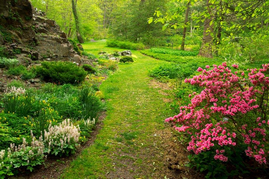 Spring LJB April 13.jpg