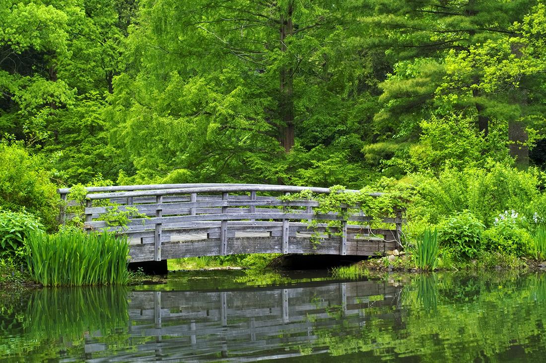 Bridge and Green Garden a.jpg