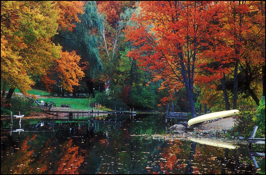 Fall Scene 2.jpg