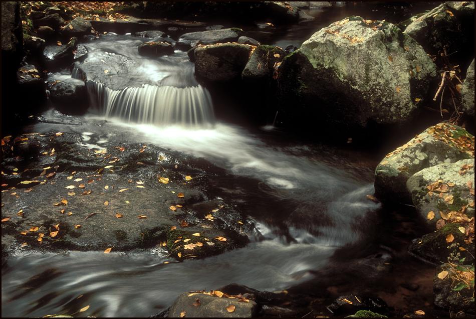 Trout Creek.jpg