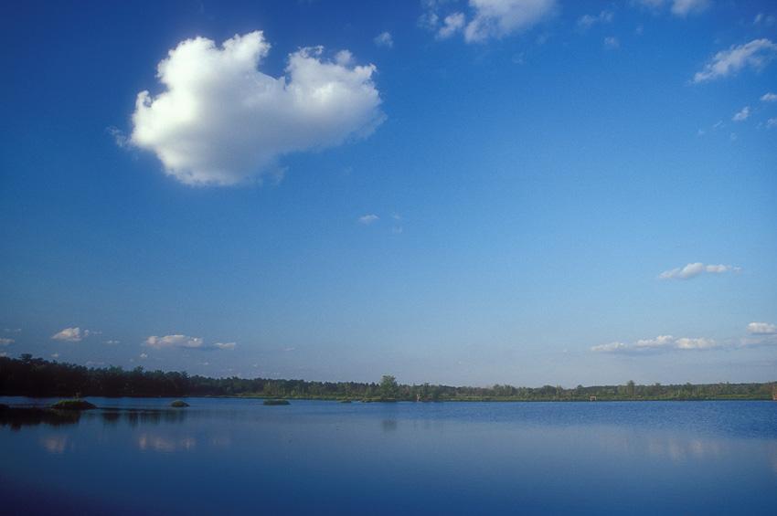 Cloud over Bog.jpg