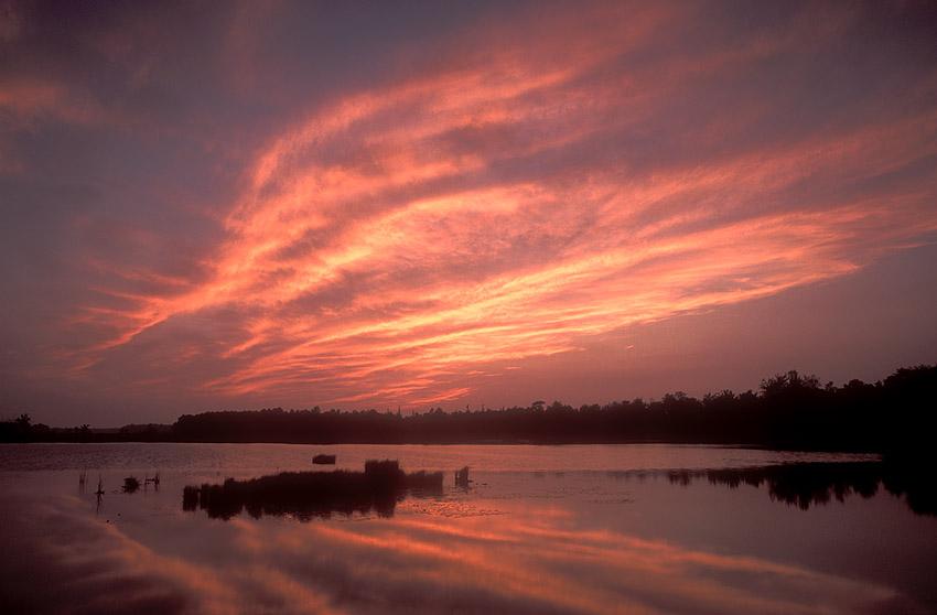 Pink Firey Sky.jpg