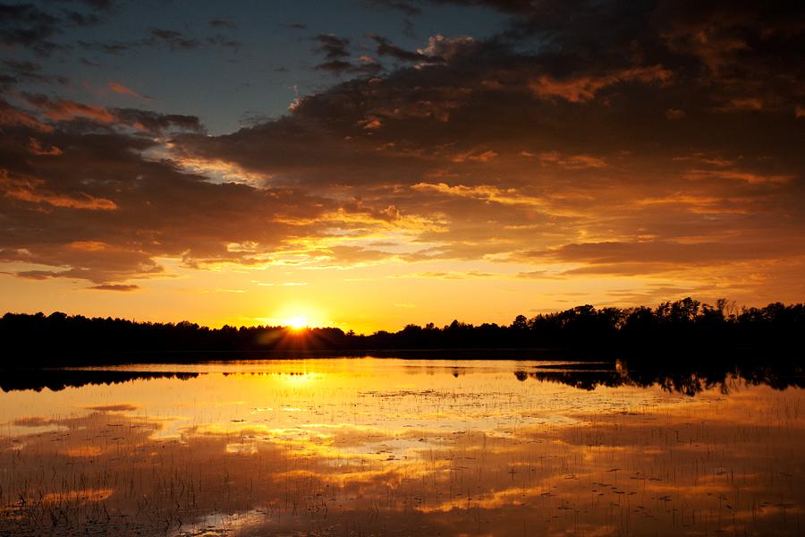 Sunset in Pine Barrens.jpg