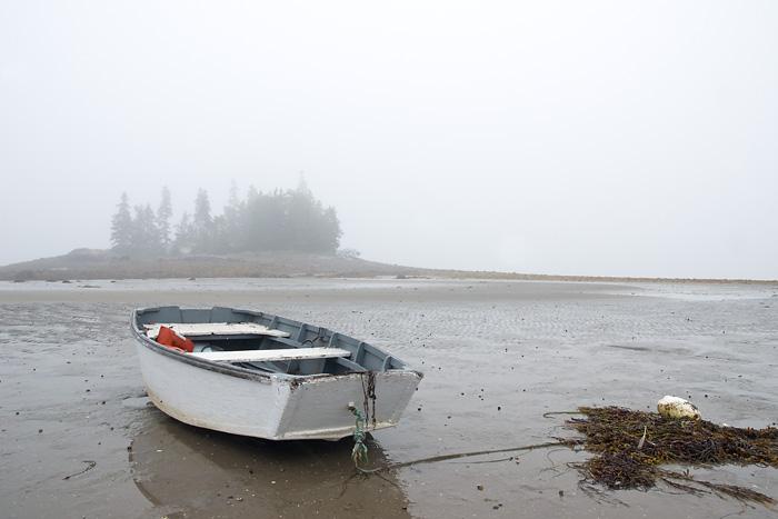 Day 6 fog.jpg