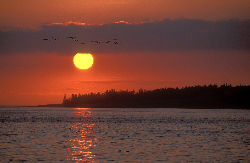 Maine Sunrise present.jpg