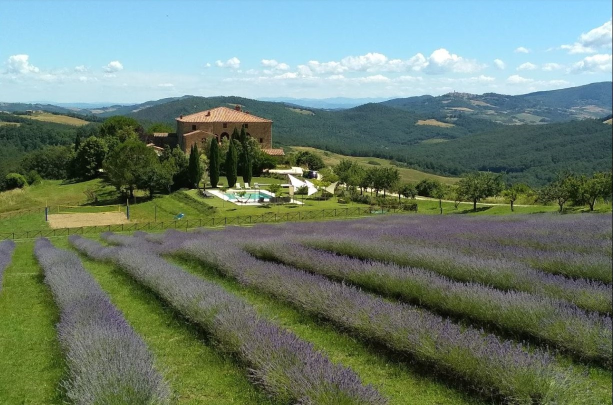 Locanda Cugnanello wide lavendar1 large_CROP_1226x810.JPG