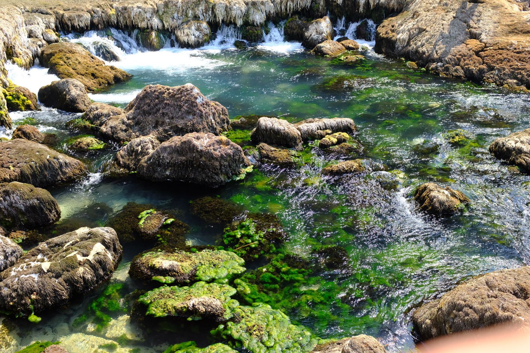 Beautiful water at Blagaj Tekke.