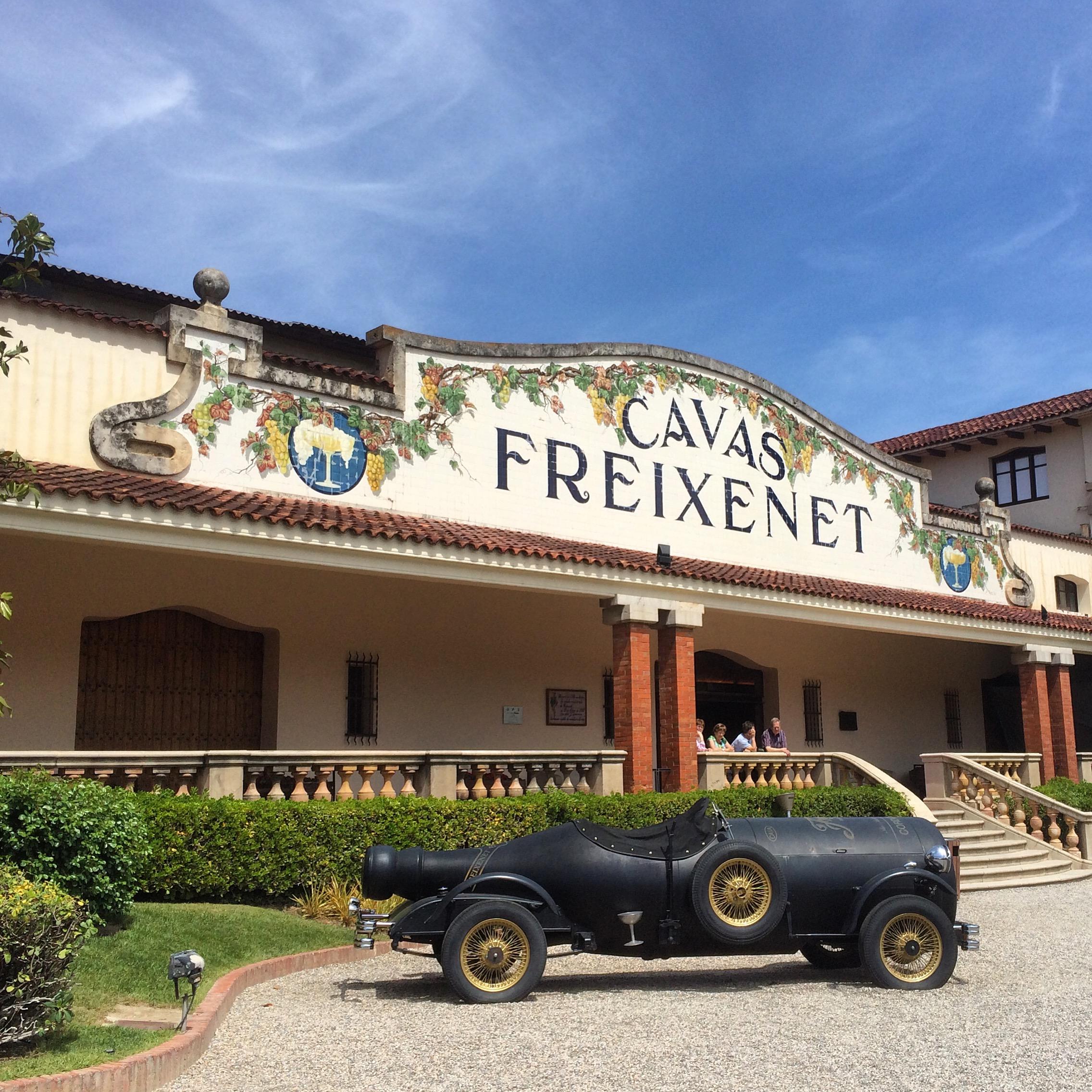 cava freixenet - just outside the sant sadurni train station