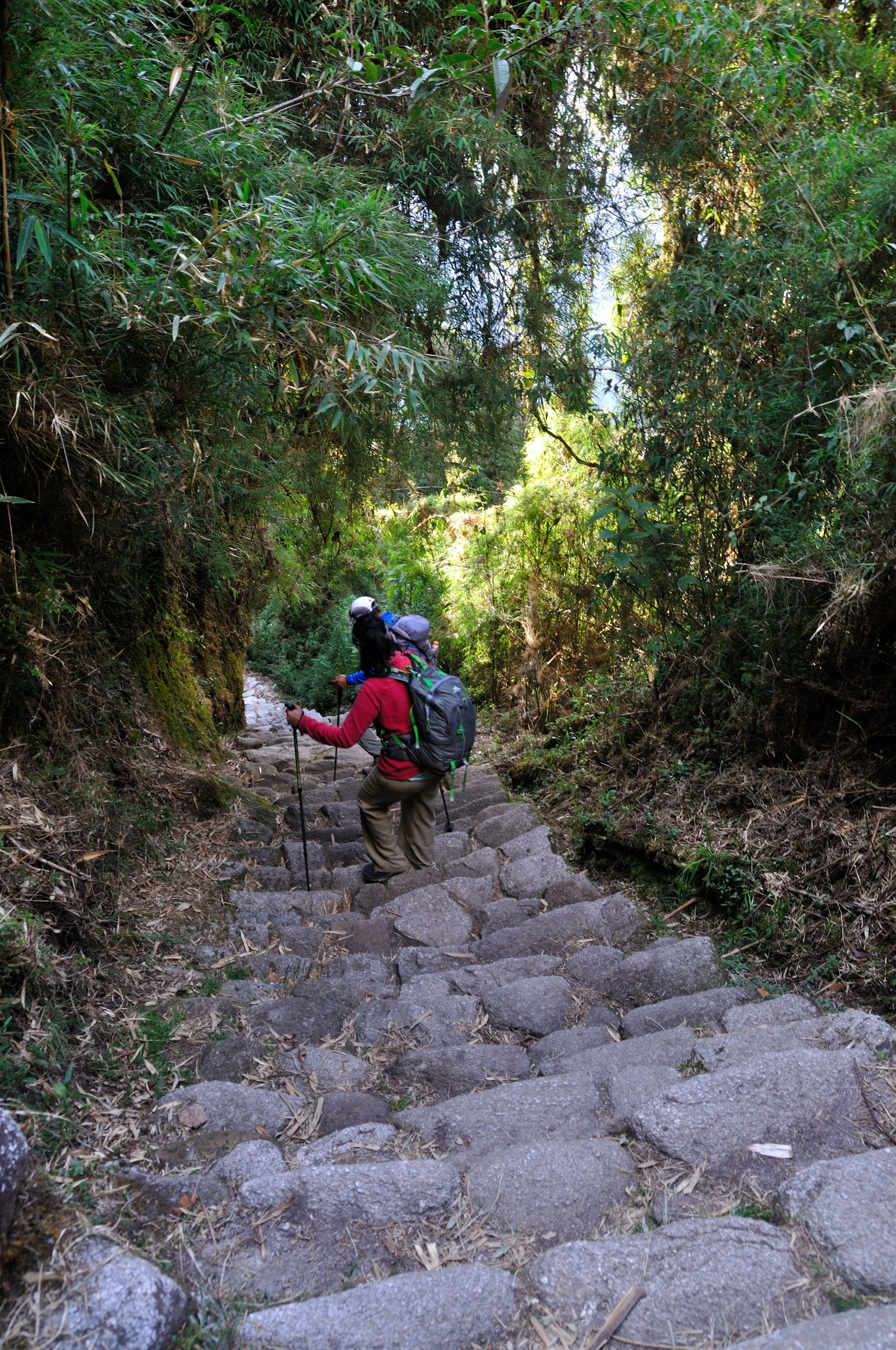 Killing my knees - once Inca step at a time