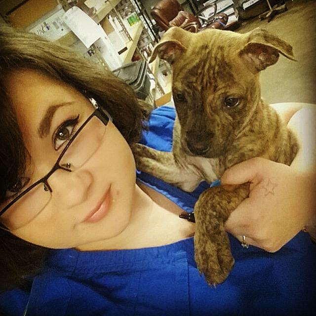 BOCEPHUS - Adopted February 2015