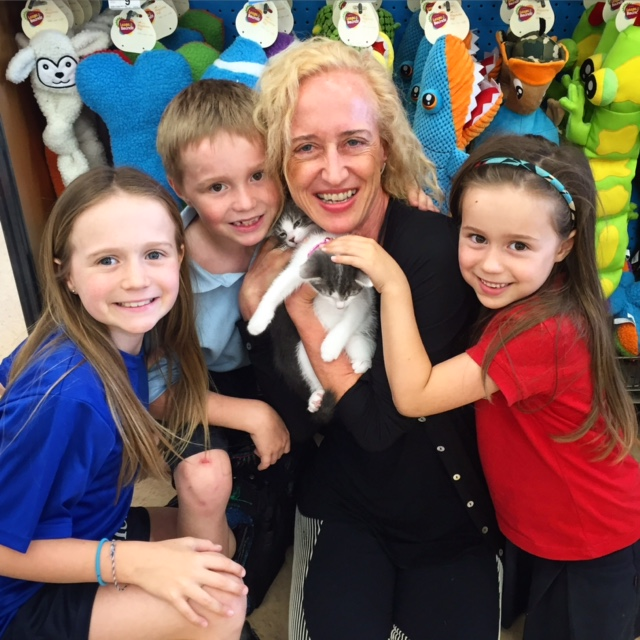 GIGI and GUCCI - Adopted April 2016