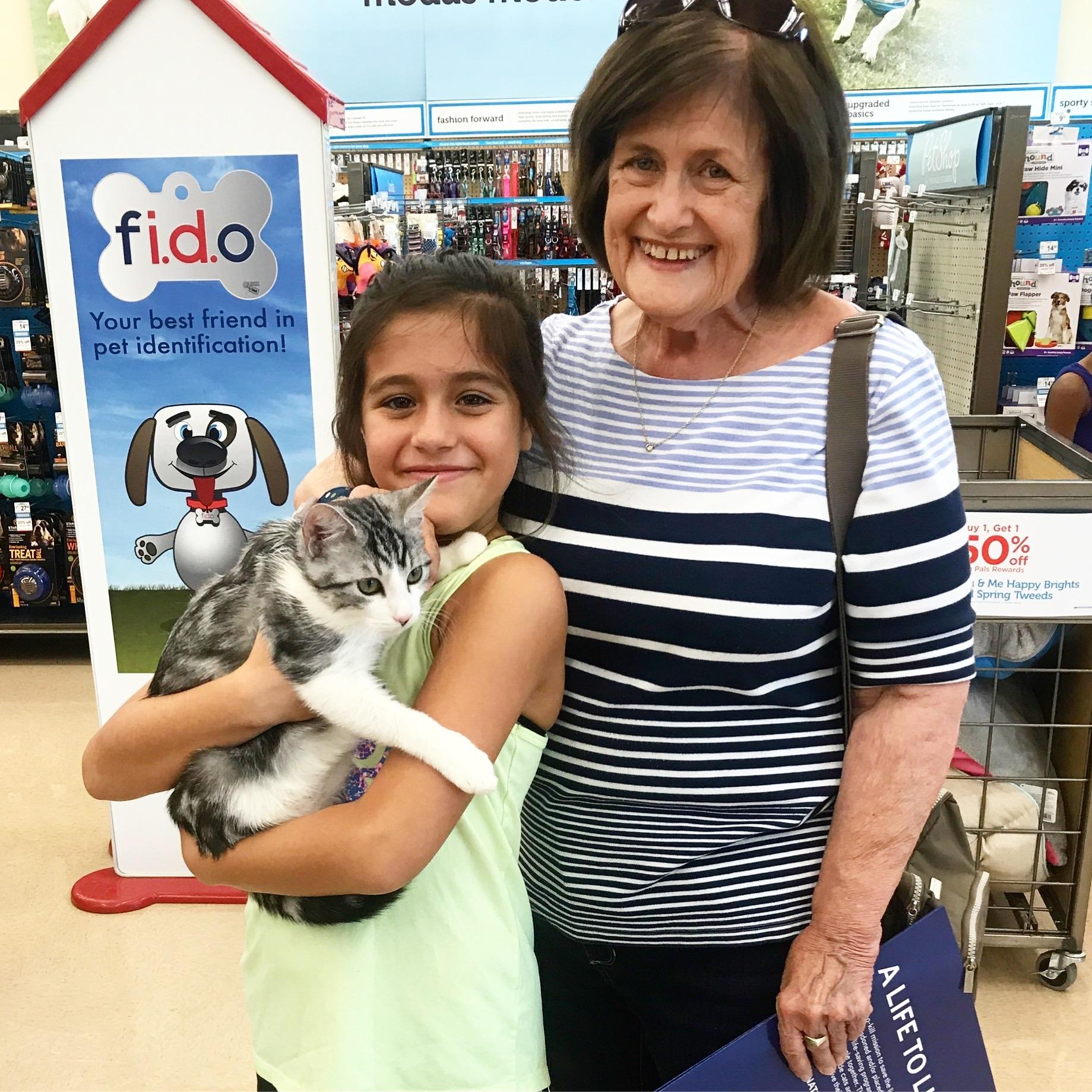 ELLIOT - Adopted September 2017