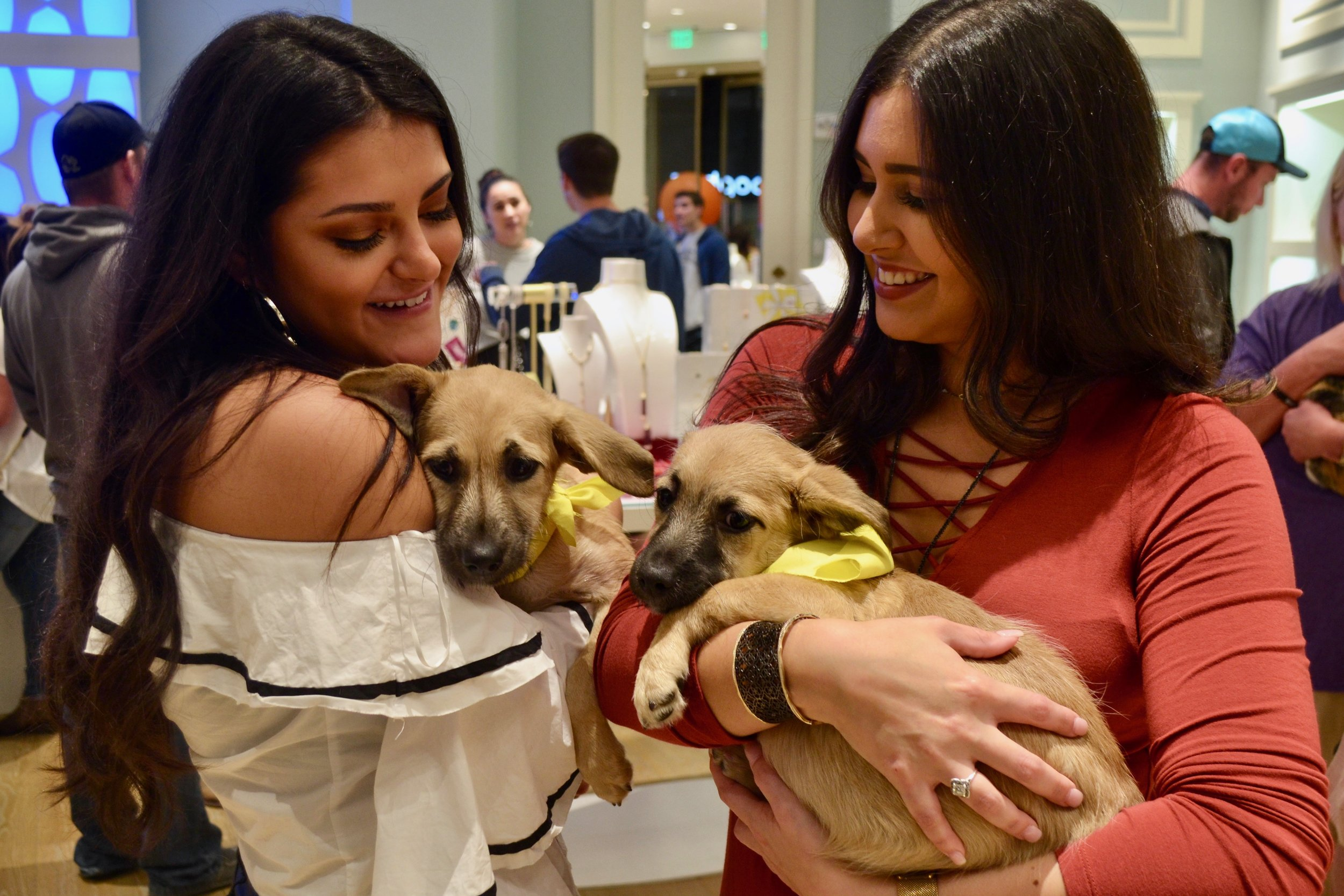Kendra Scott's employees love our adoption events. Who doesn't love some cuddles and kisses while on the clock? Makes for a happy employee and customer when puppies are involved!
