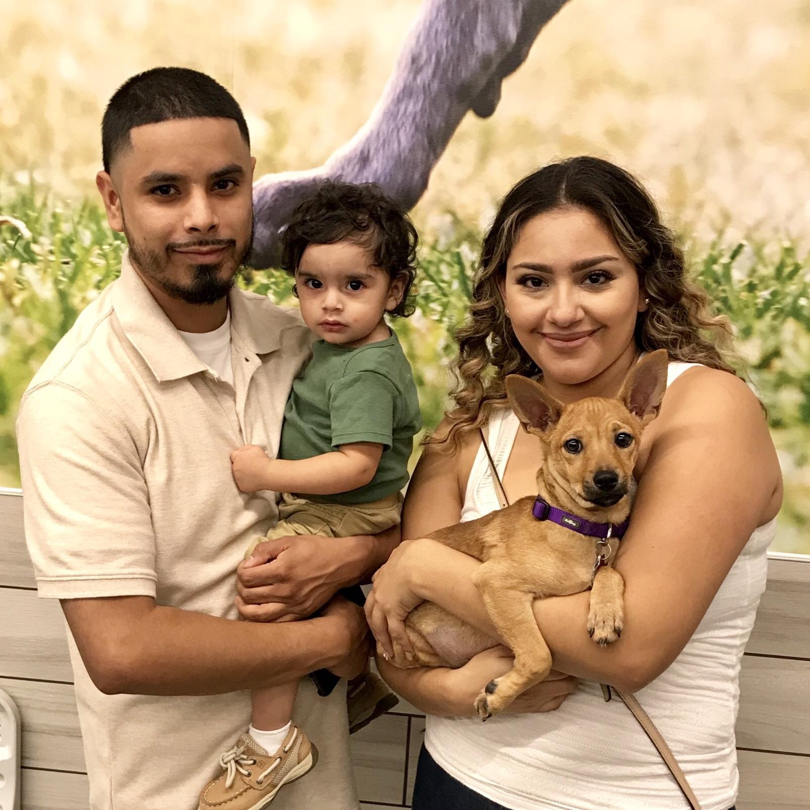 RUSTY - Adopted November 2017