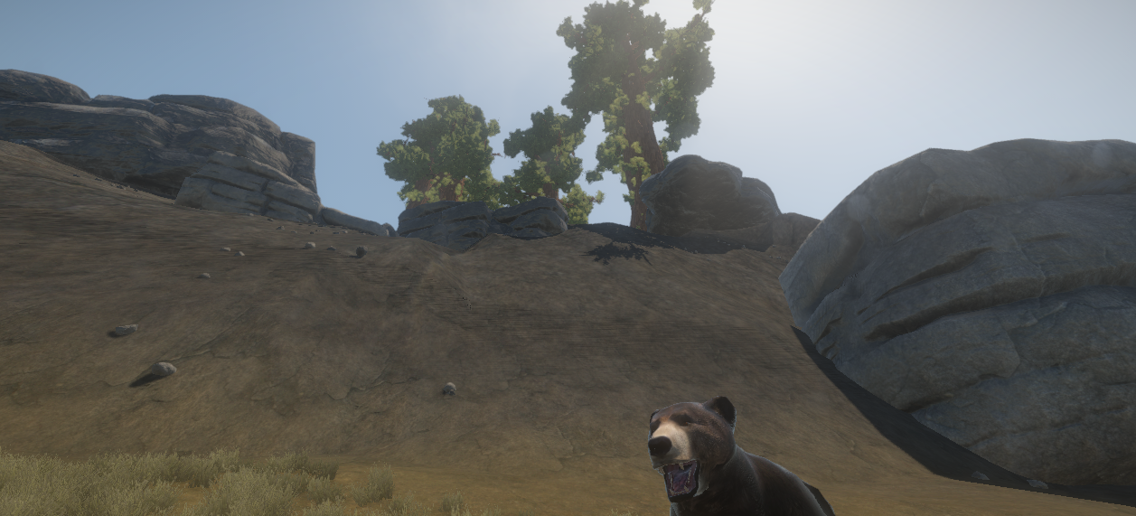 Loving these new big trees!