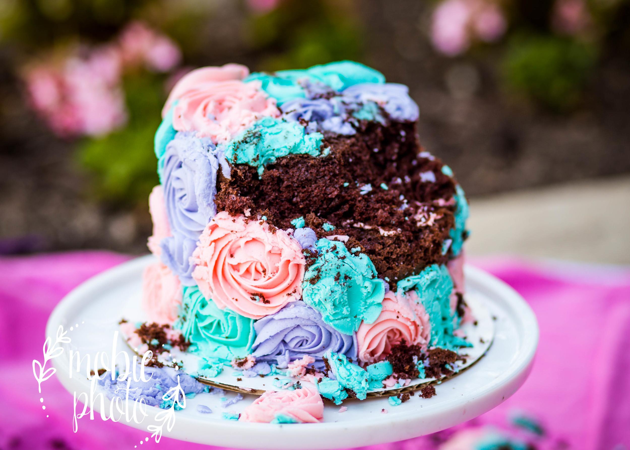 1st Year Photography - Lehi, Utah - Outdoor Cake Smash