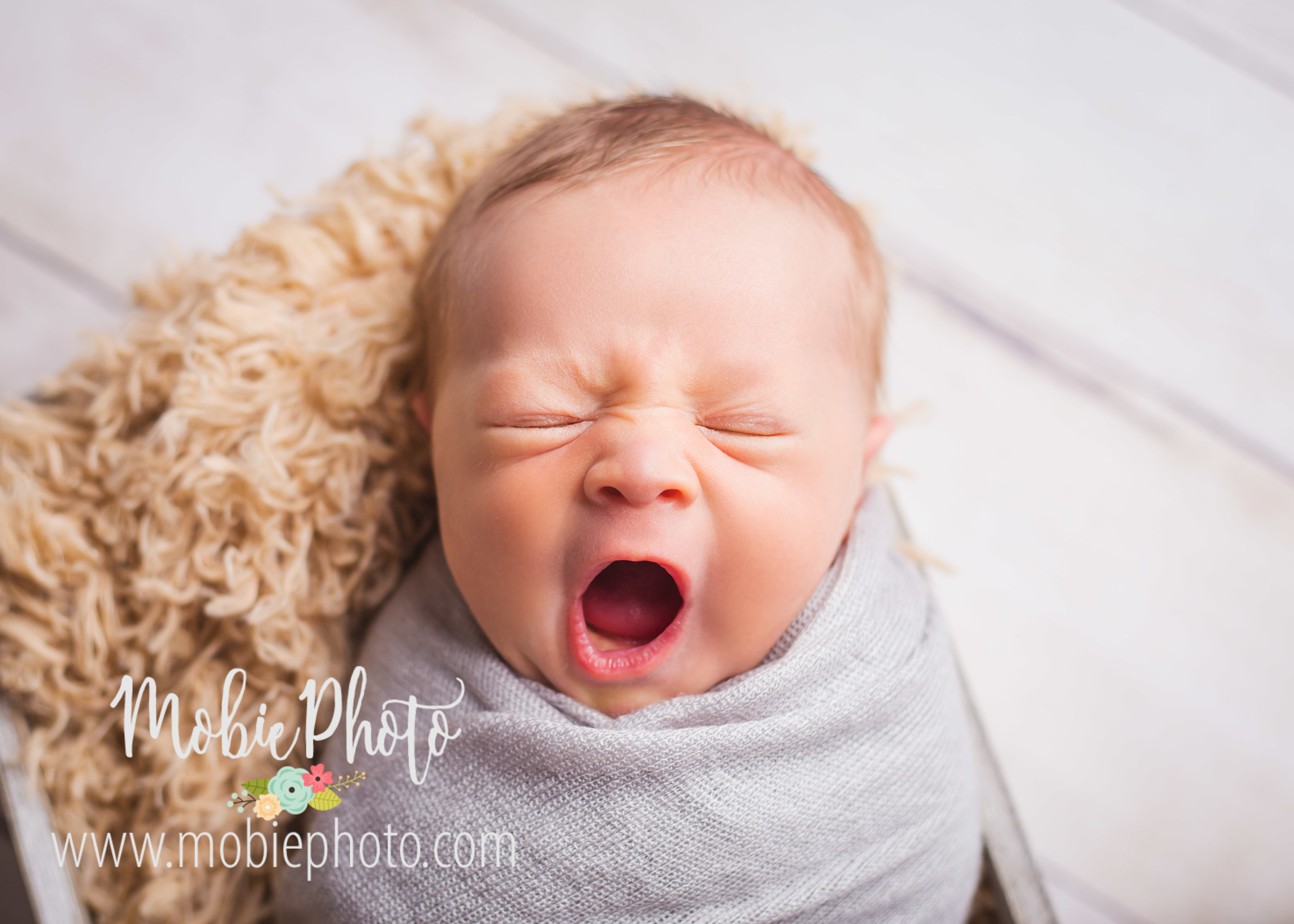 Mobie Photo - Utah Professional Newborn Photographer