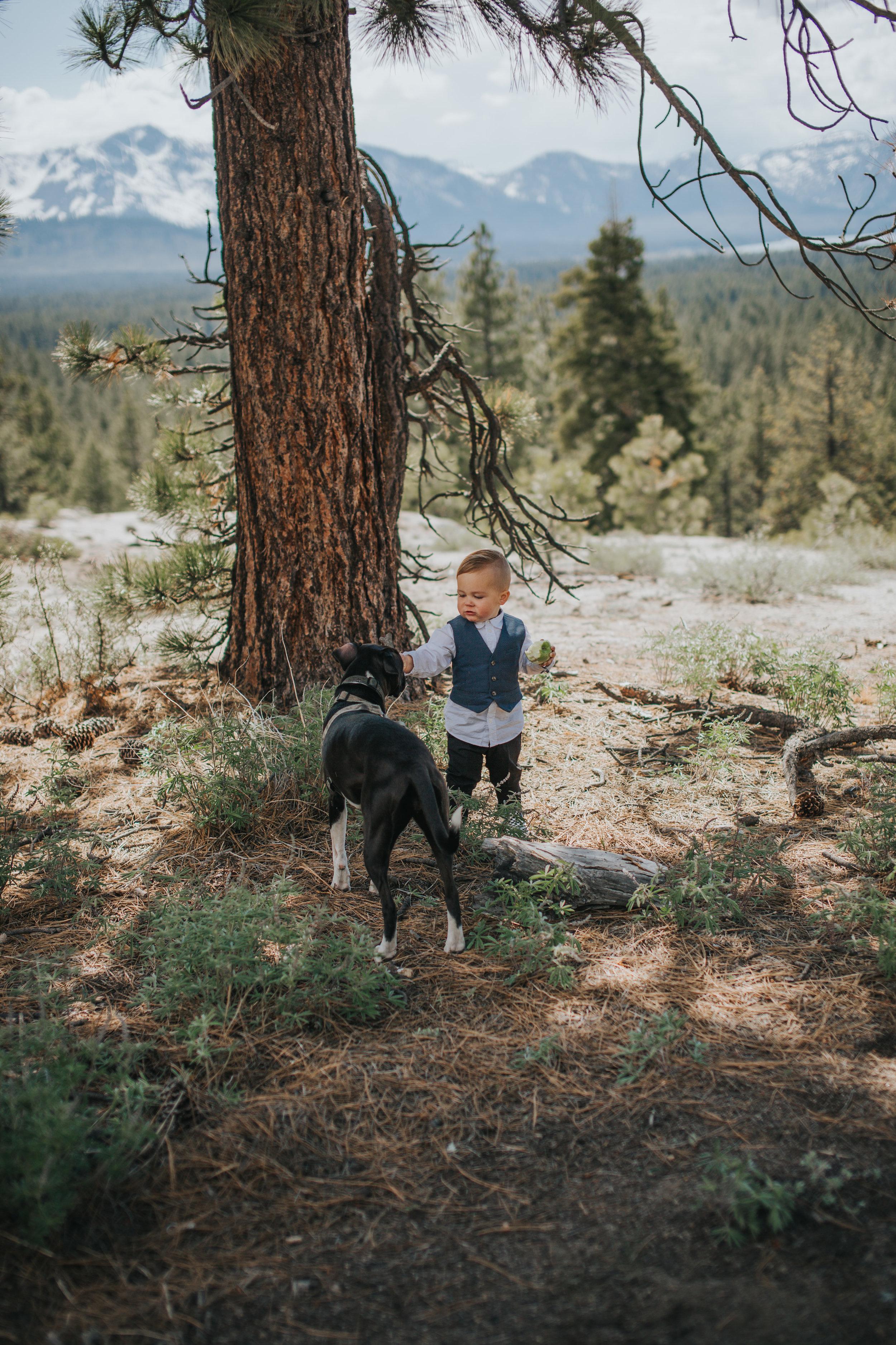 south-lake-tahoe-elopement-valerie-lendvay-photo-042.jpg