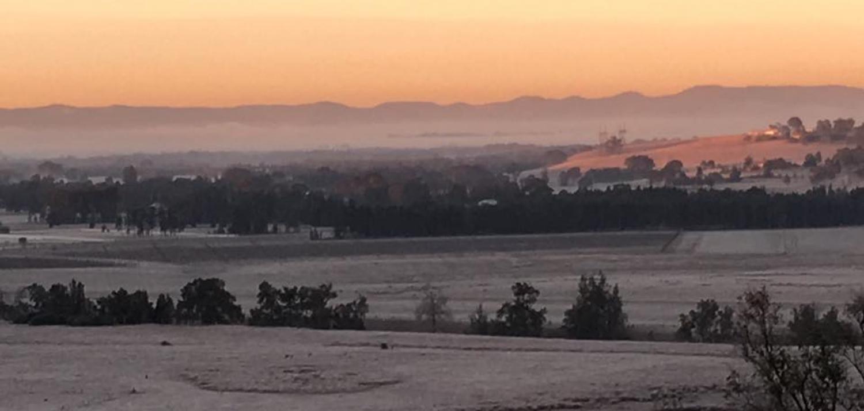 frosty morning.jpg