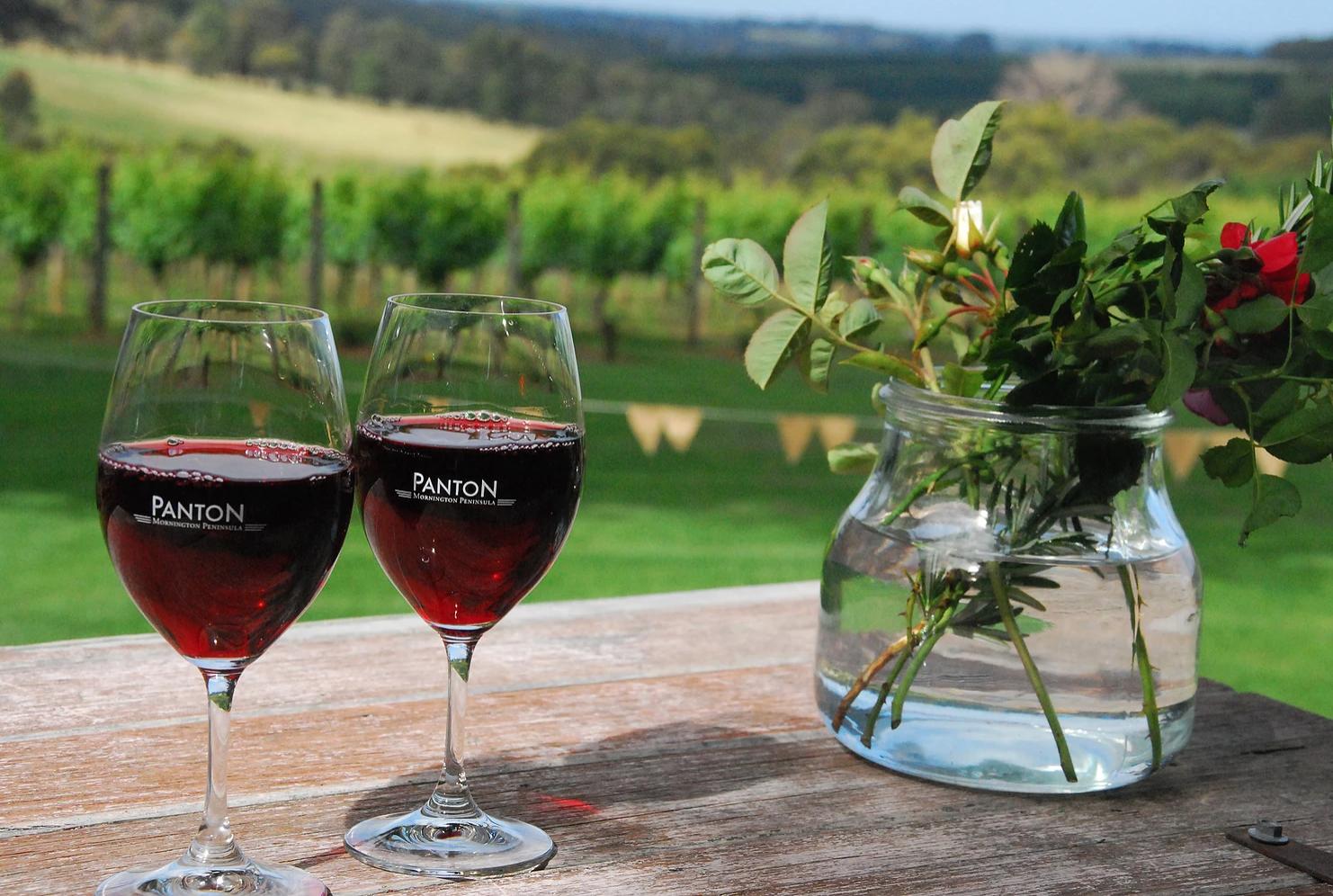 wine tour sorrento.png
