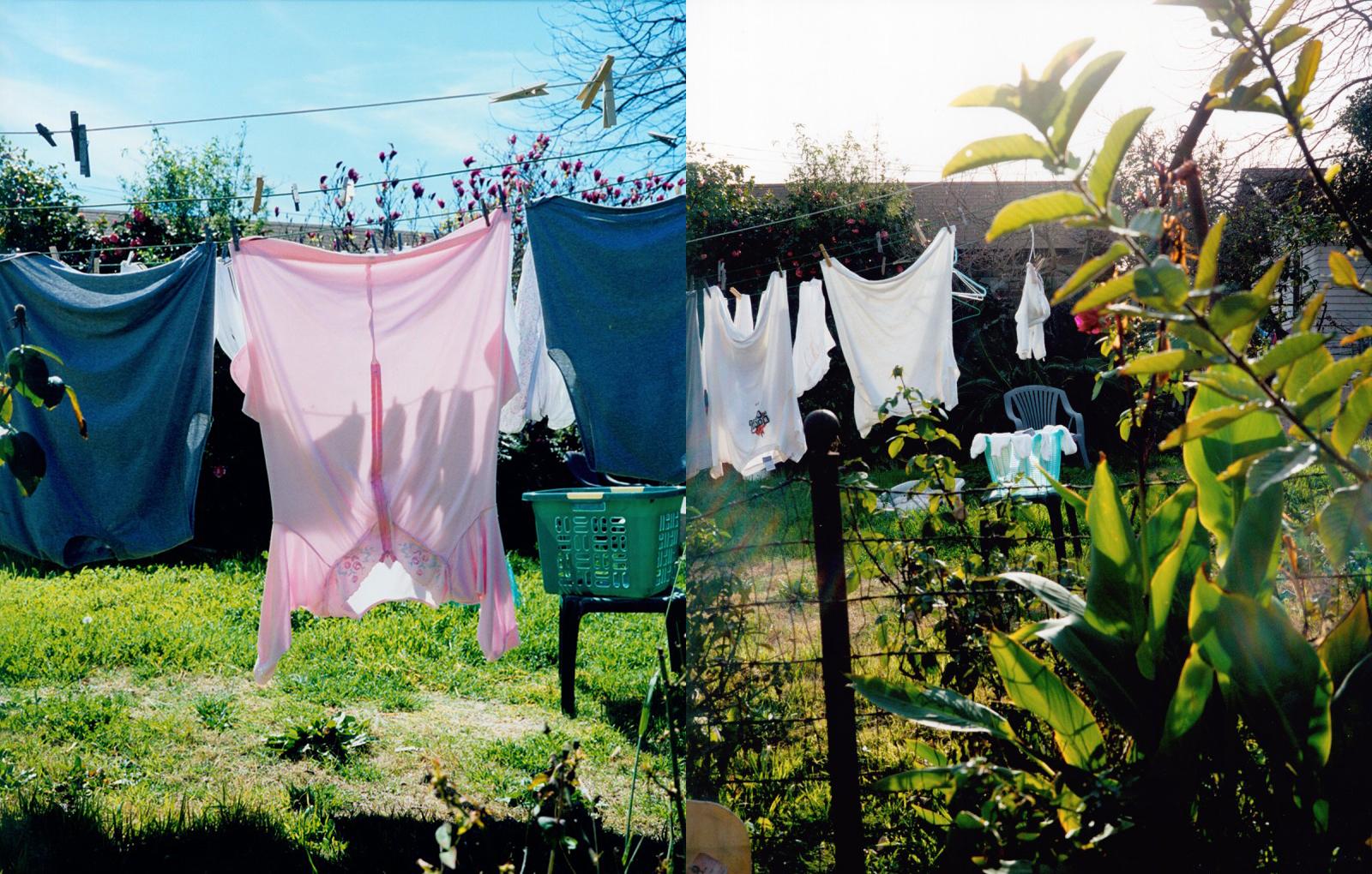 ec_backyard_10-11.jpg