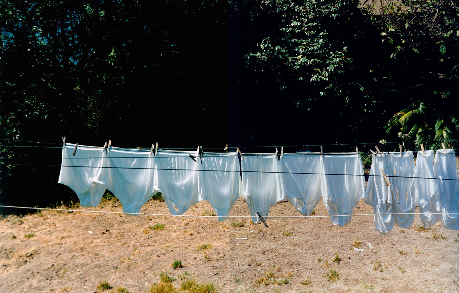 ec_backyard_34-35.jpg