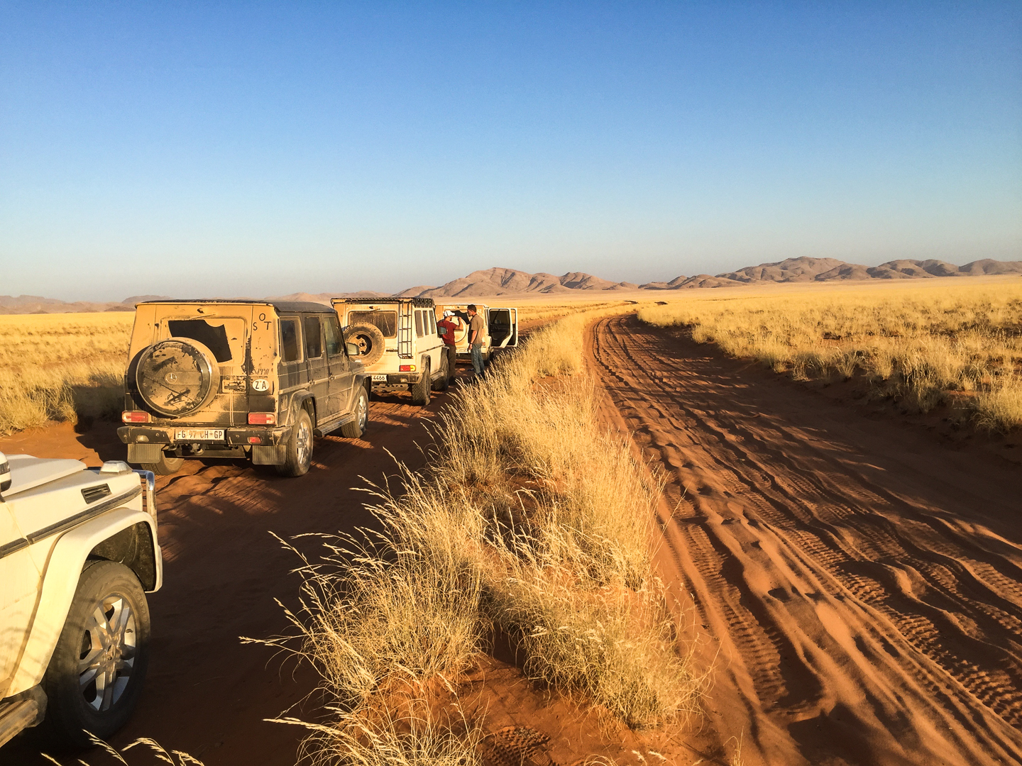 NAMIBIA, WITH HORN   A 5-DAY HI-OCTANE CHASE ACROSS SW AFRICA WITH THE WORLD'S GREATEST LIVING EXPLORER   DISCOVER