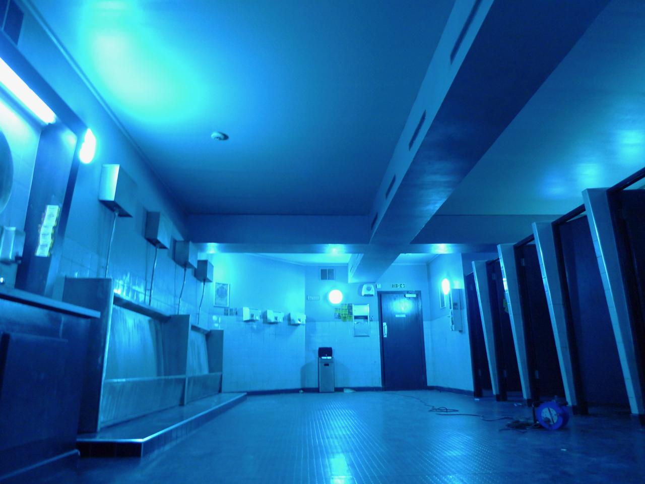 TS2_Club Toilets2_ASquires2016.jpg