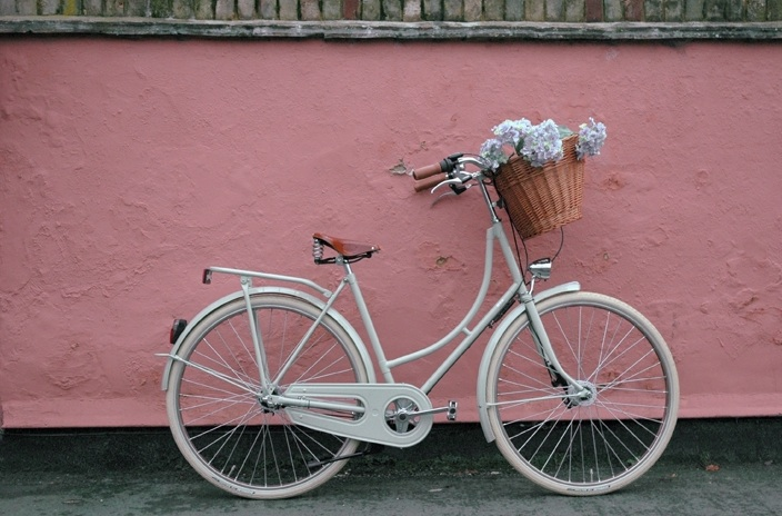 dutch bike best for back pain