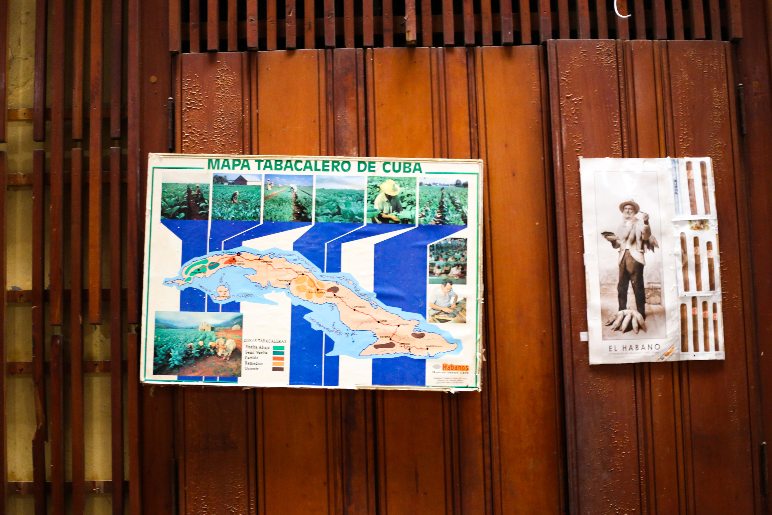 Havana (48 of 78).jpg