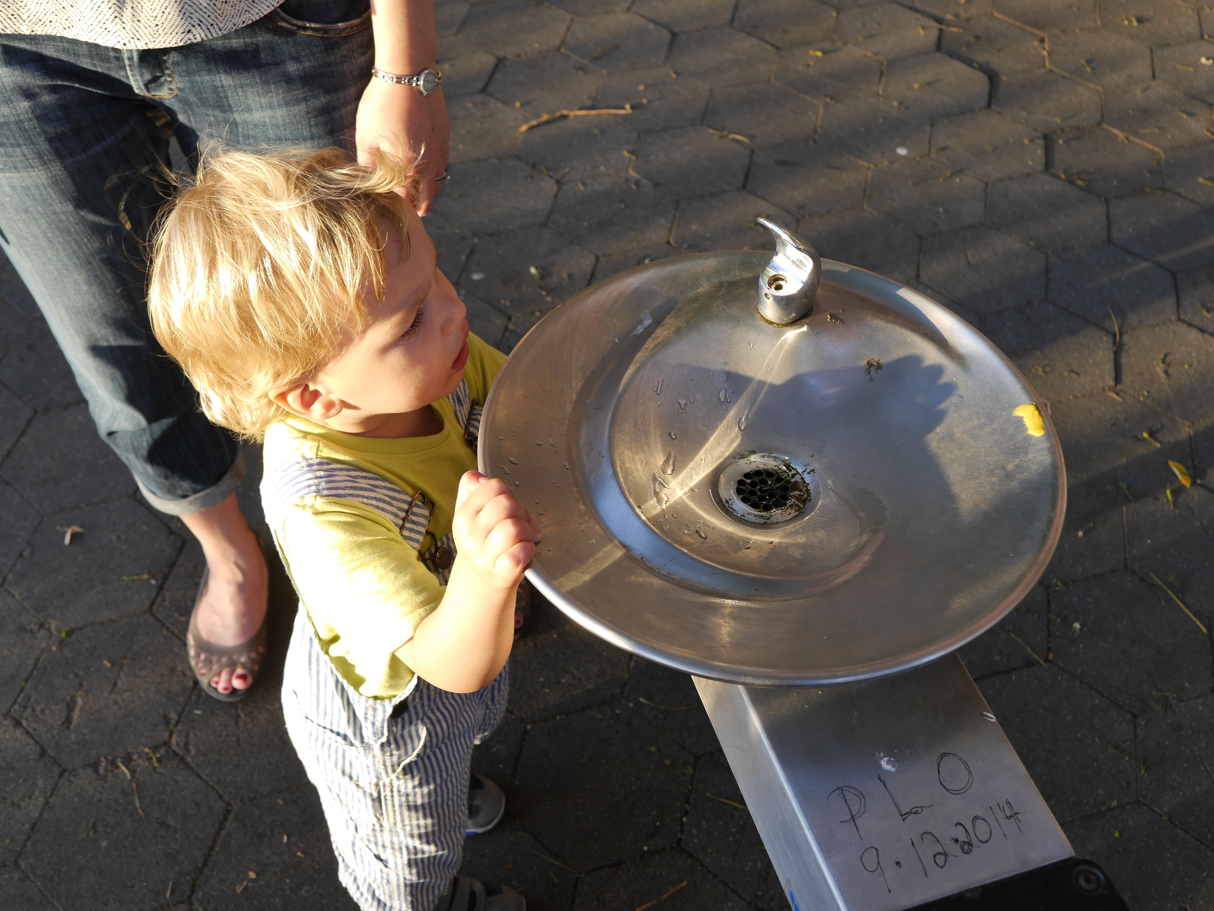 Water fountains are tricky when you're short.