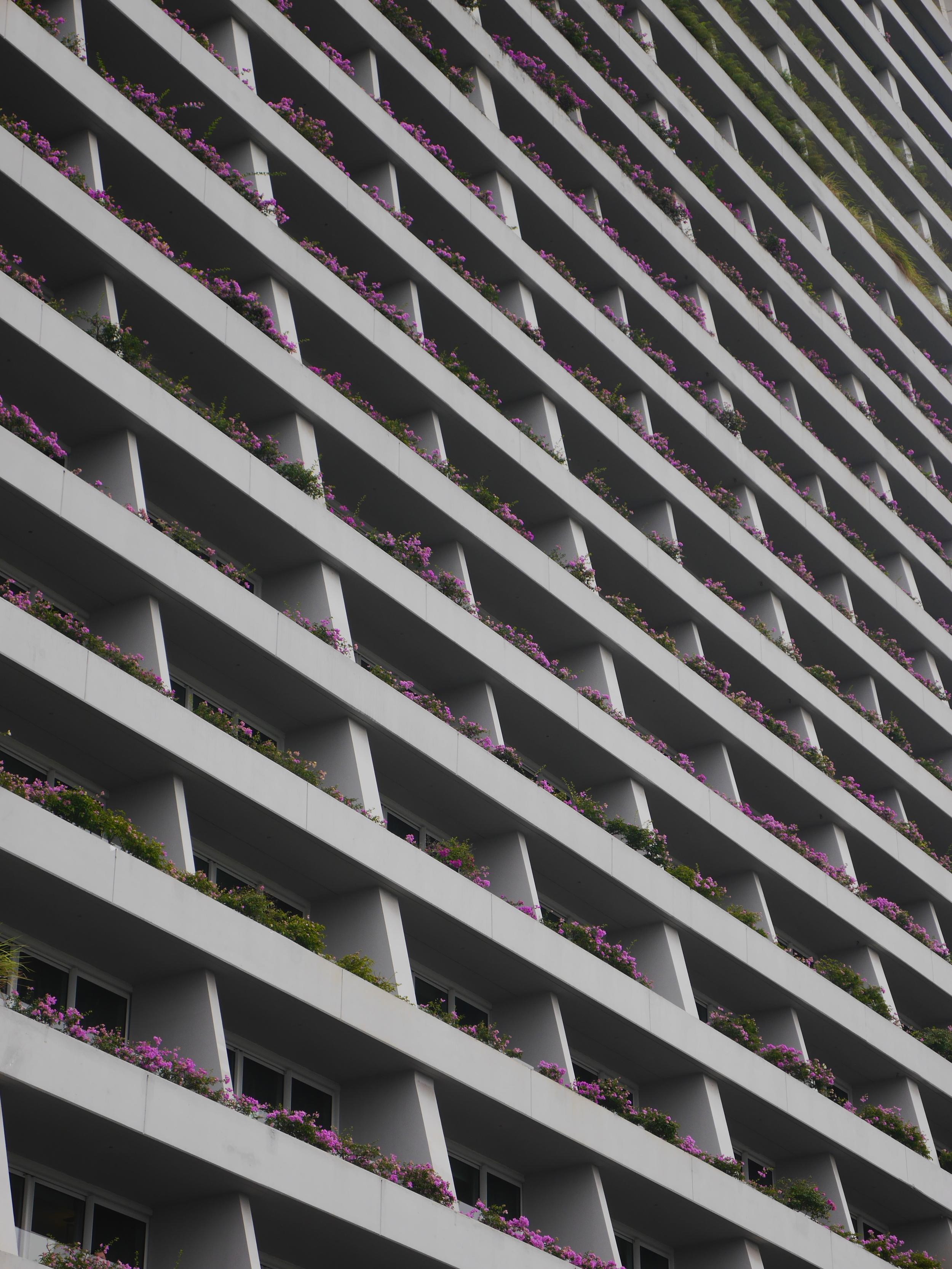 Flowers on balconies.