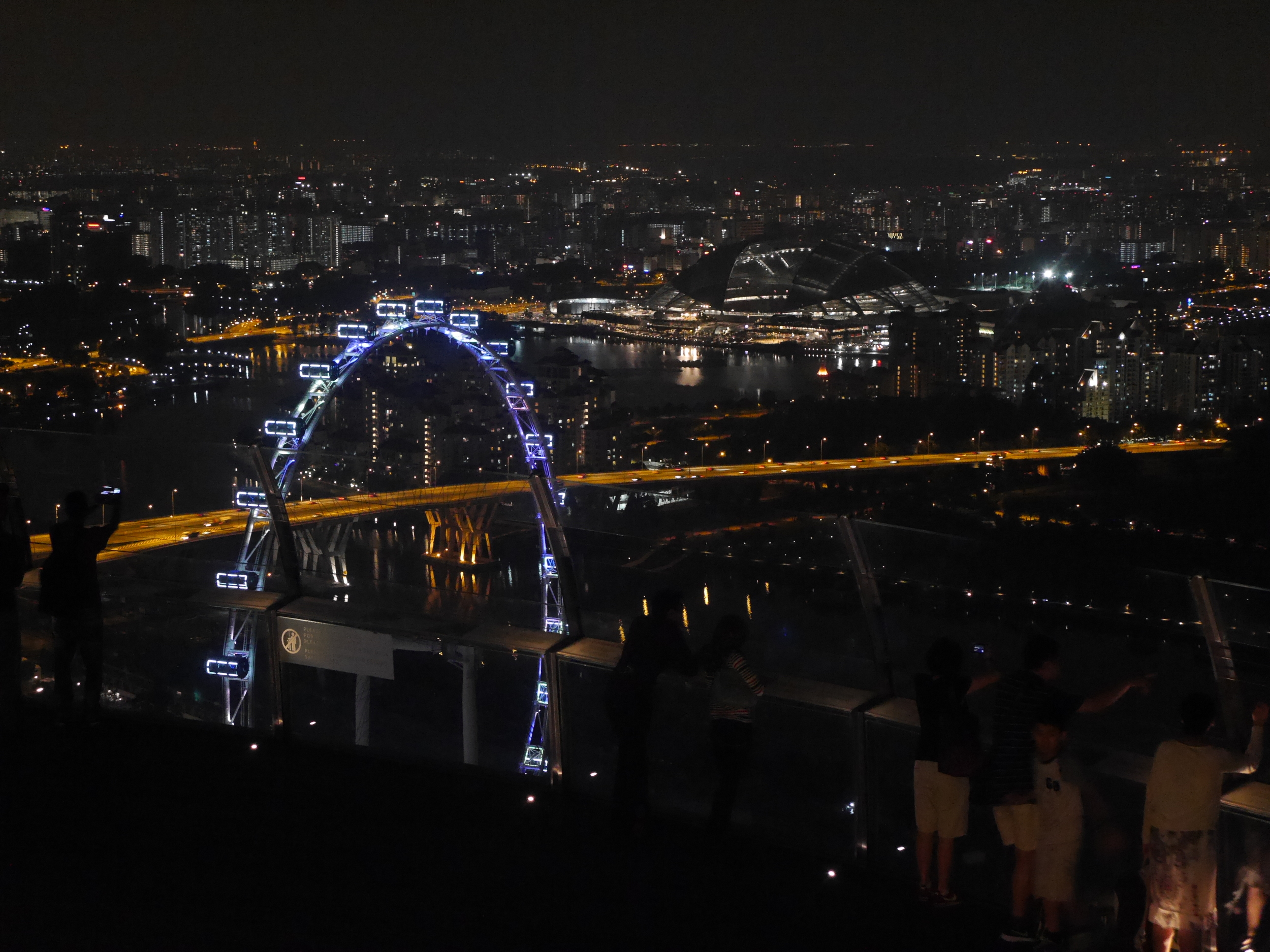 A view of the Singapore Flyer at night, from the Ku Dé Ta bar atop the hotel.