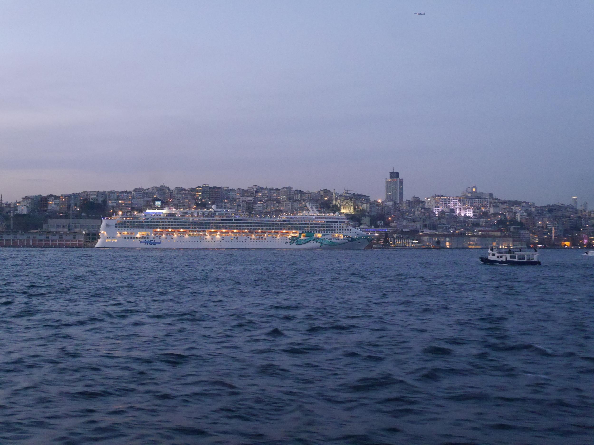 A big ol' cruise ship.