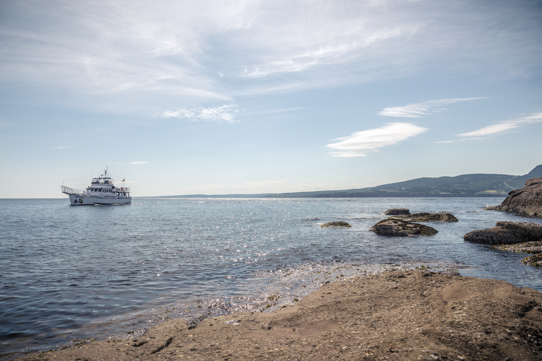 Bonaventure Island - Île Bonaventure - Percé - Quebec - Tora Photography