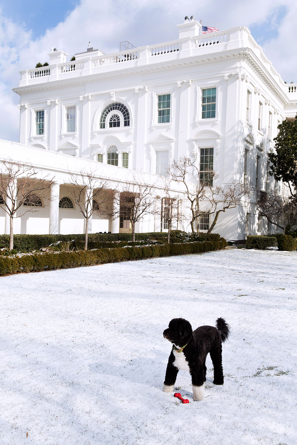 By White House (White House (P012413PS-0277)) [Public domain], via Wikimedia Commons