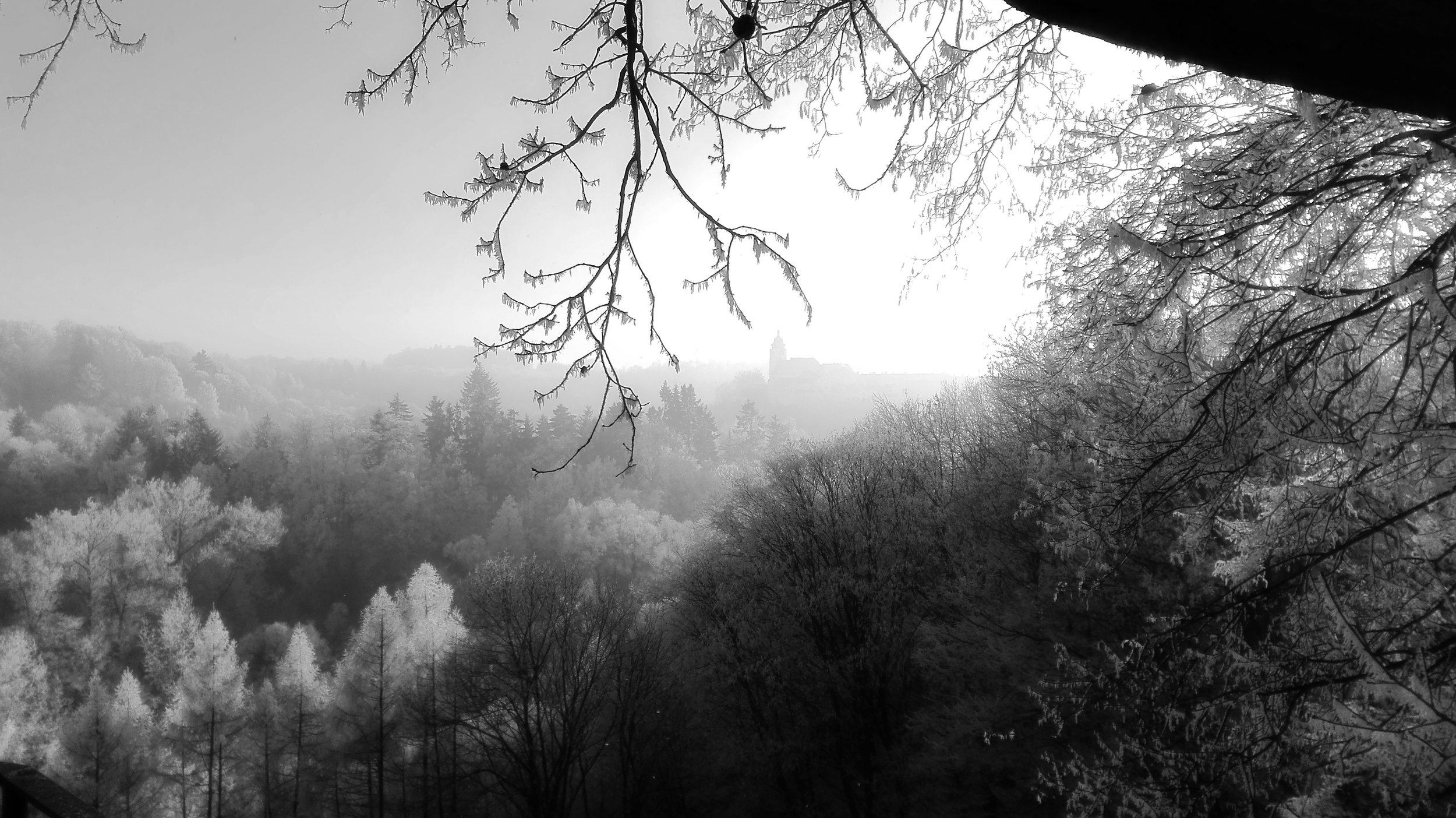 winter-2835173.jpg