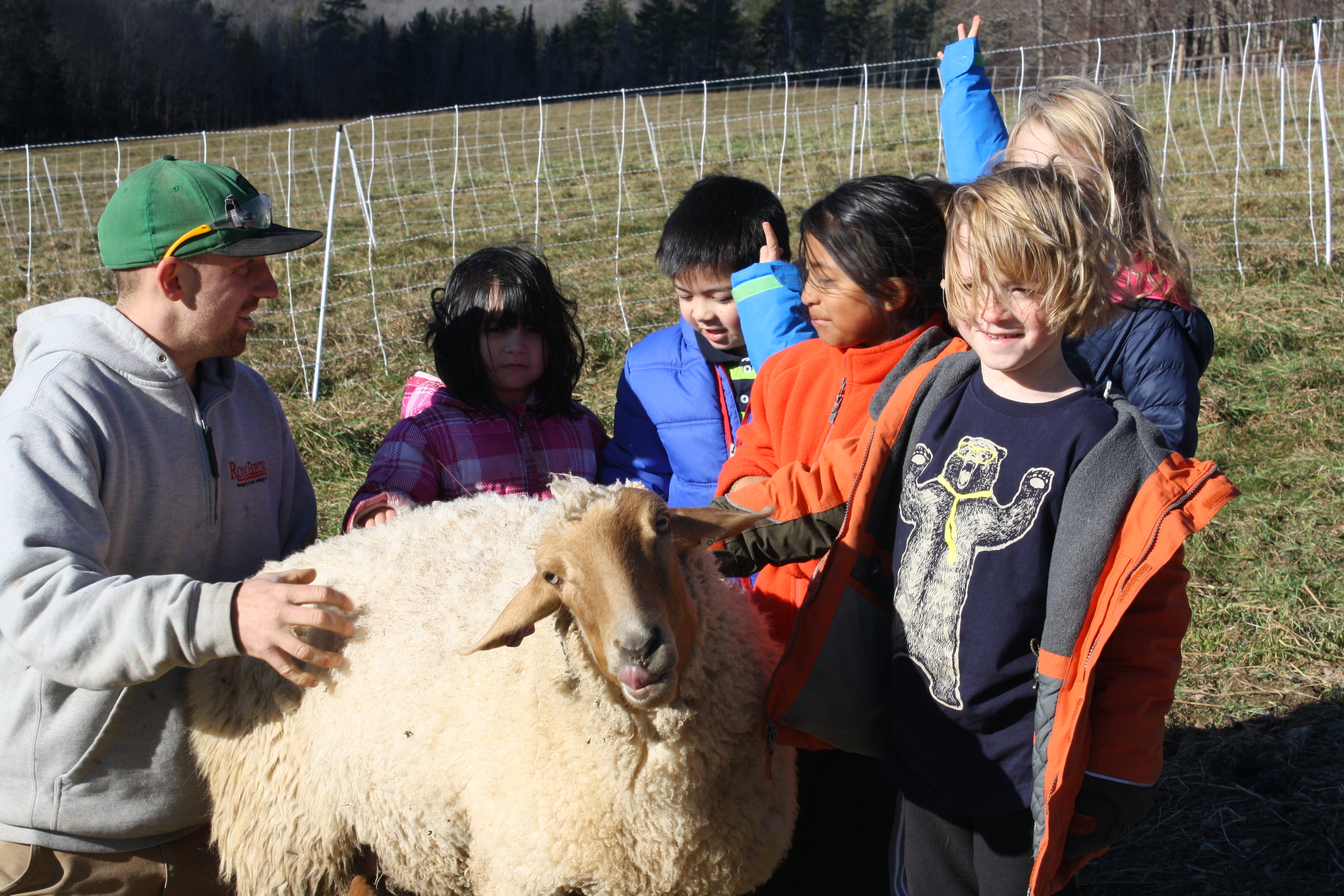 """Lily's fiance """"Goose"""" gives her Read Aloud group sheep scratching lessons"""