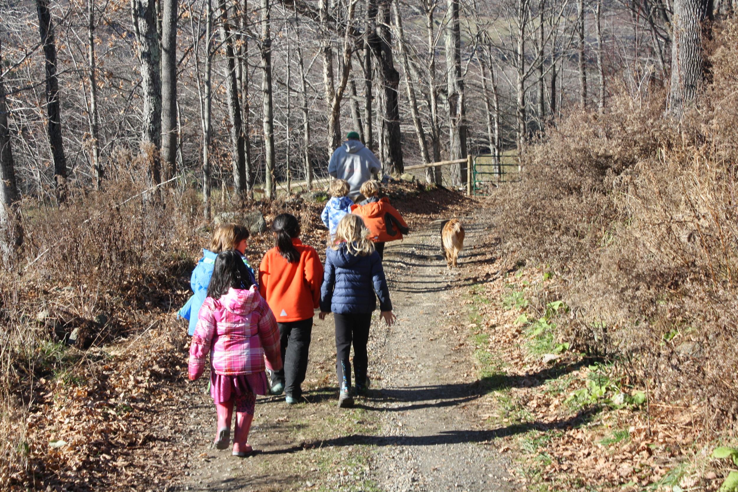 Students explore Wood's Hole Farm