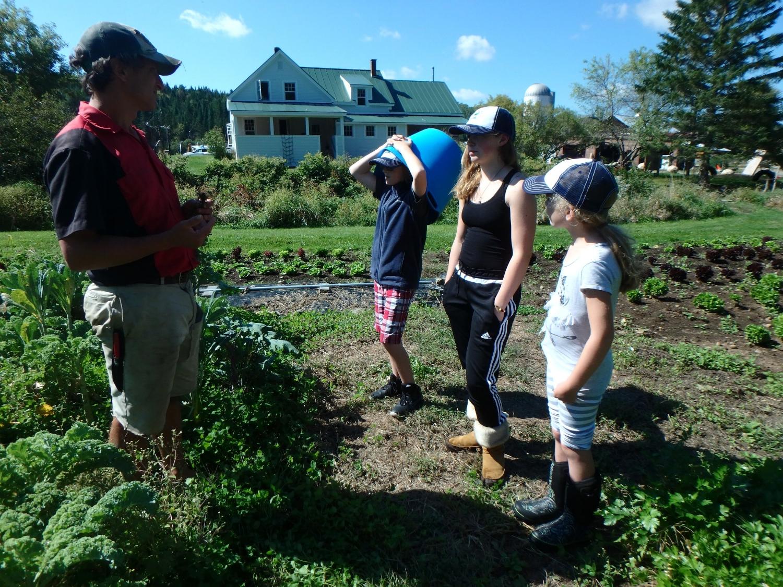 Farmer Tim teaches ori, zoe and aida about using clover as a nitrogen fixer in the soil.