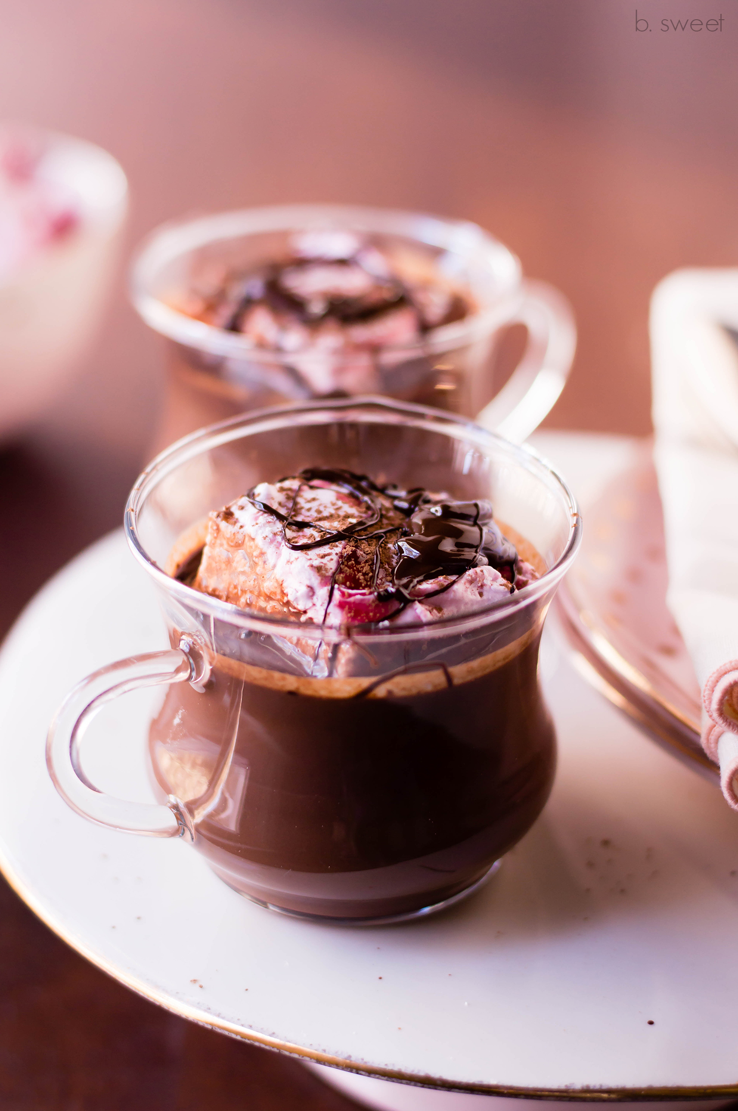Dark Chocolate Raspberry Hot Chocolate for Two - b. sweet