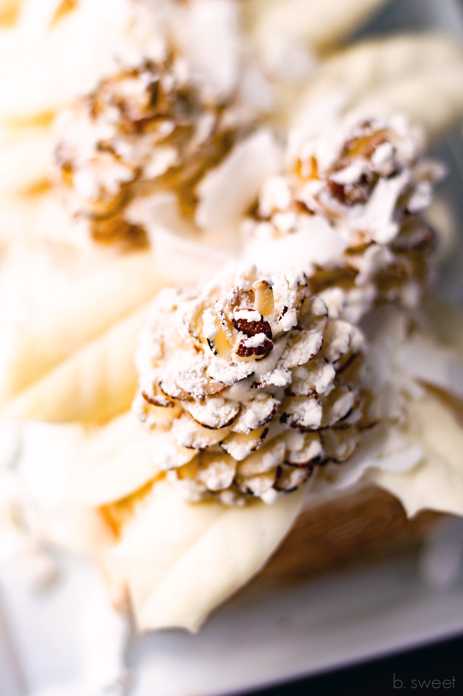 Winter White Yule Log - Check out this recipe for more information on making the almond slice pine cones (scroll to the bottom of the page.)