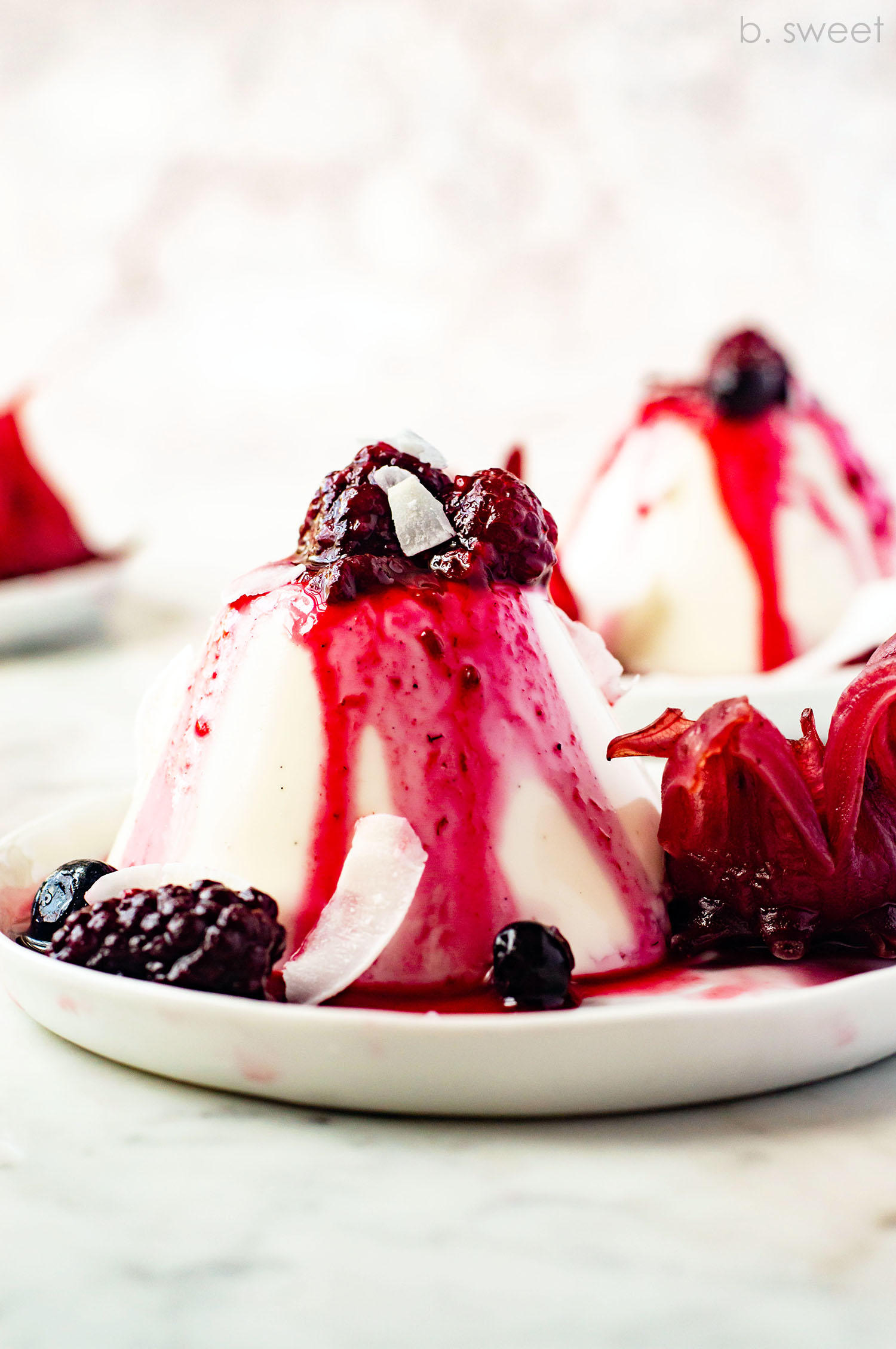 Vanilla Coconut Panna Cotta with Hibiscus Berry Sauce - b. sweet