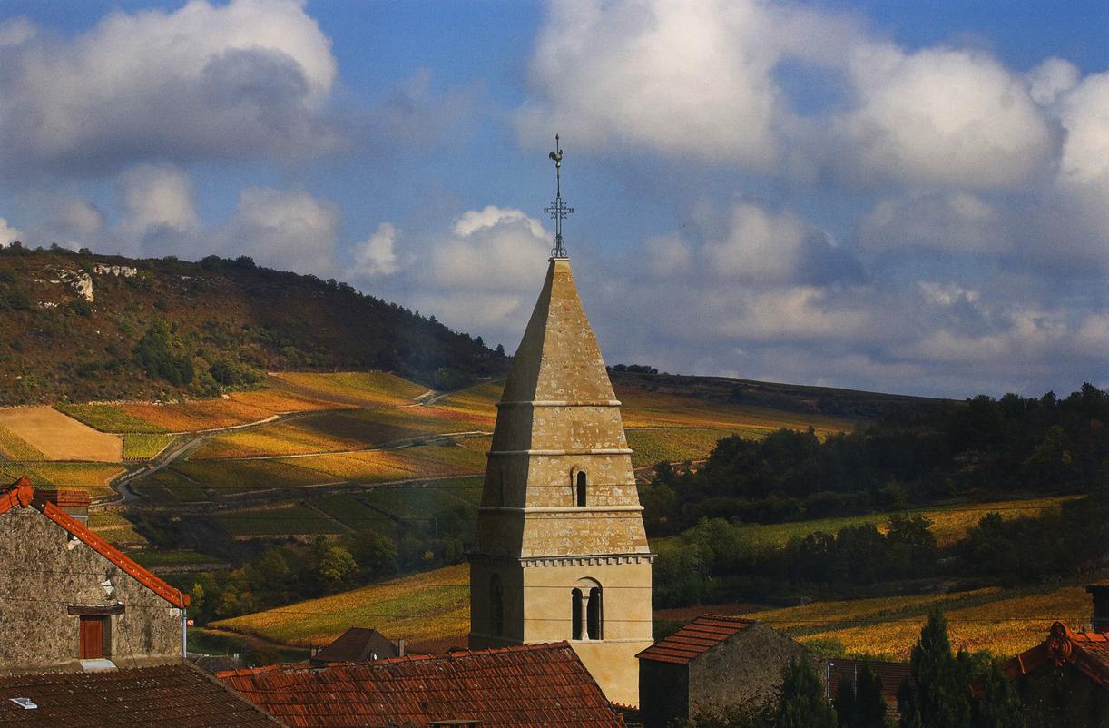 Saint Aubin, Burgundy