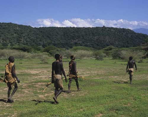 walk-bushmen