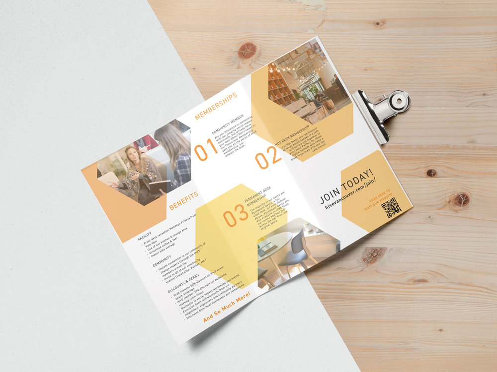 Tri+Fold+Brochure-middle.jpg