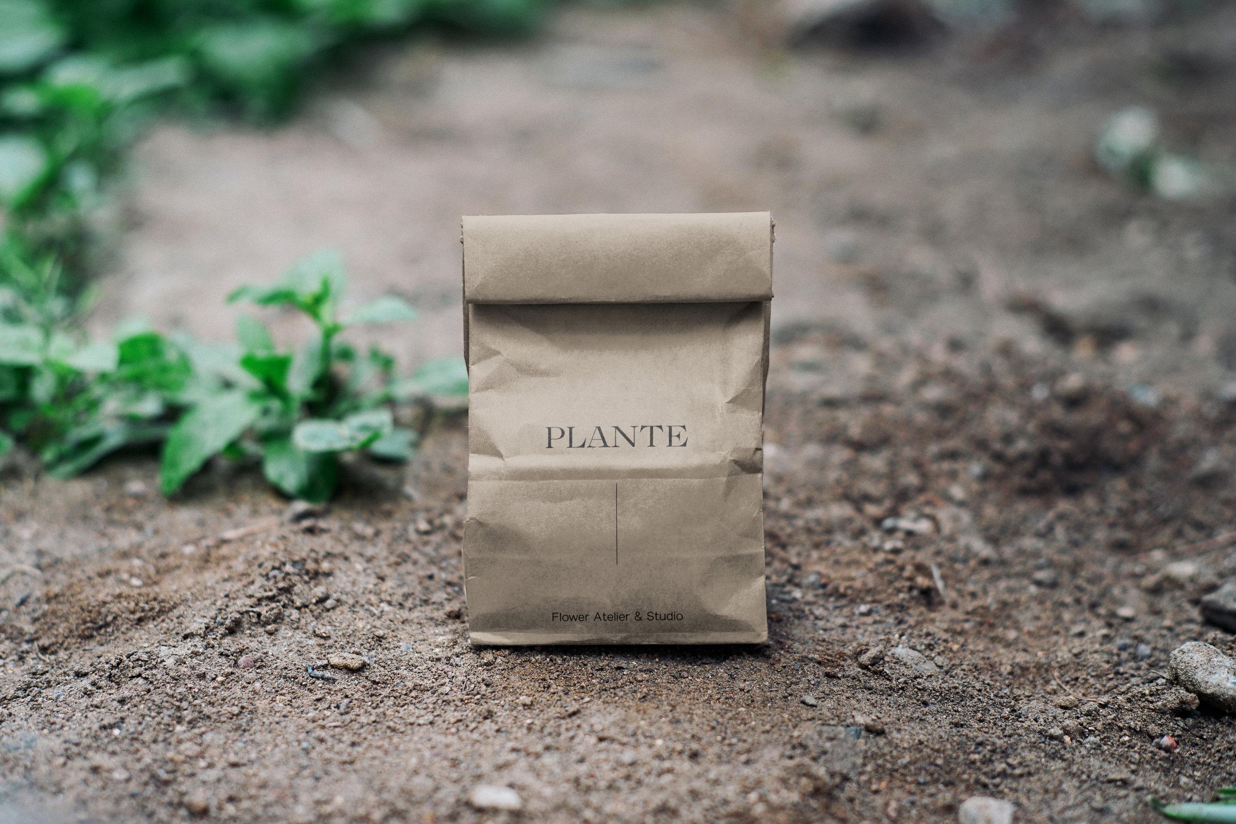 Plante Paper Bag Mockup.jpg