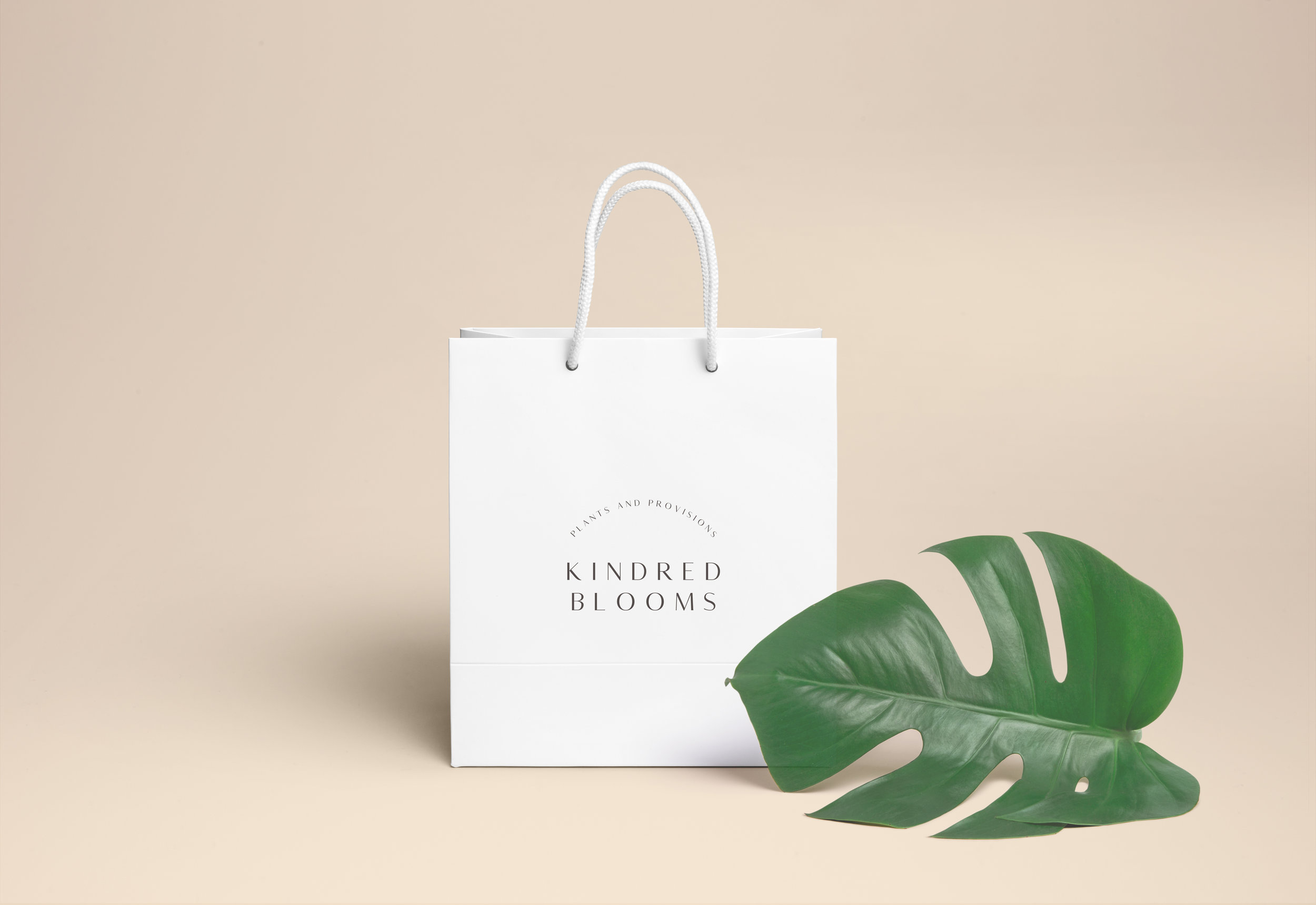 Kindred Bag-02 copy.jpg